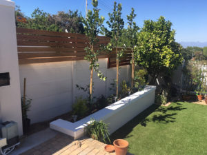 Landscaping in Wynberg